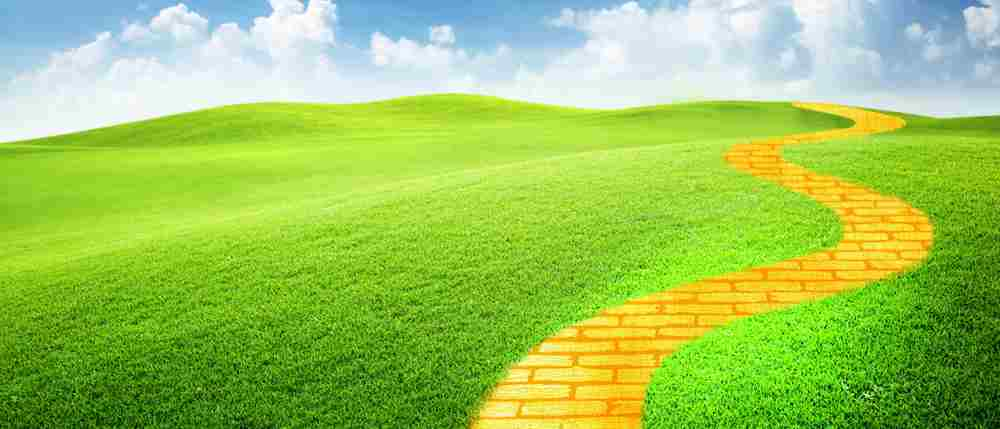 Follow the yellow brick road to the Macron this Christmas to see The Wonderful Wizard of Oz